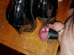 Female domination cock and ball torture